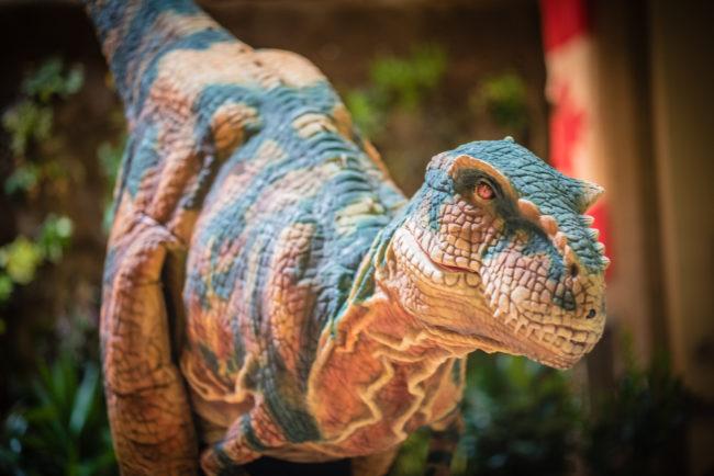 A photo of Maverick, THEMUSEUM's dinosaur.