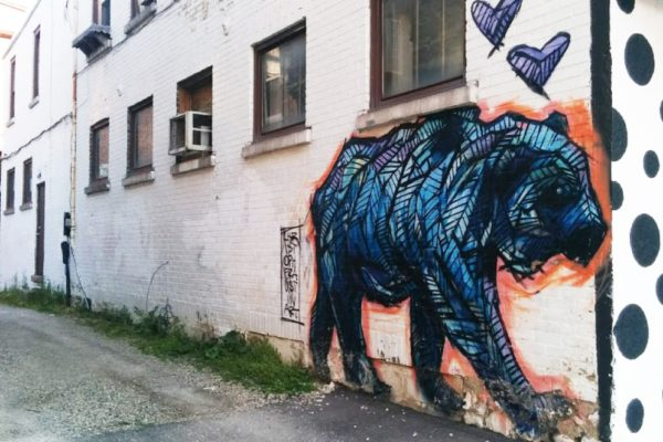Street art of a blue bear on Ontario St. in Kitchener.