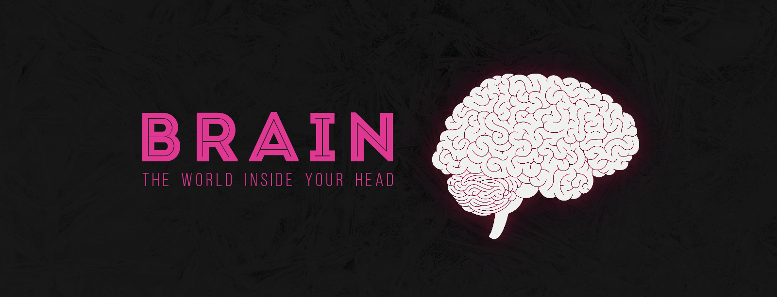 BRAIN: The World Inside Your Head